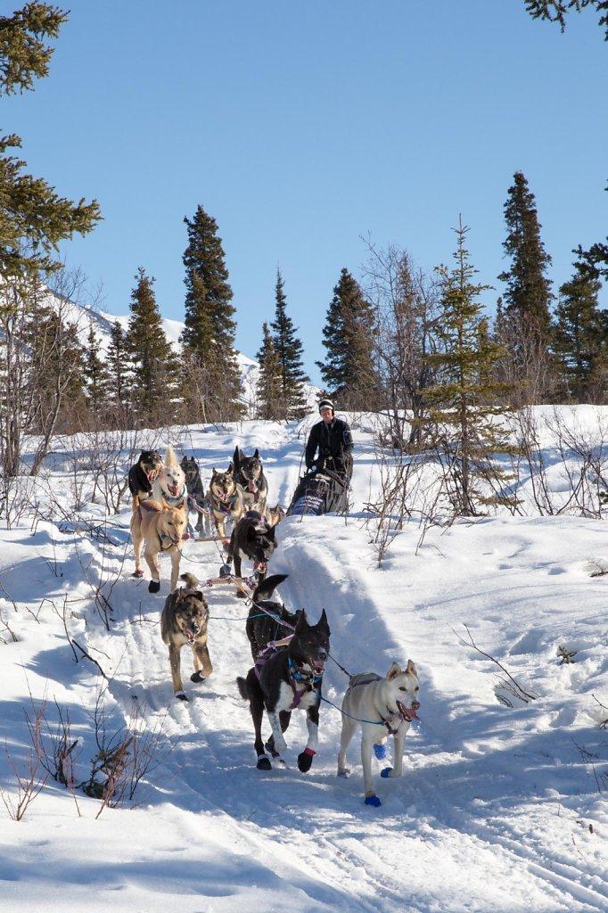 IditarodDay2-033.jpg